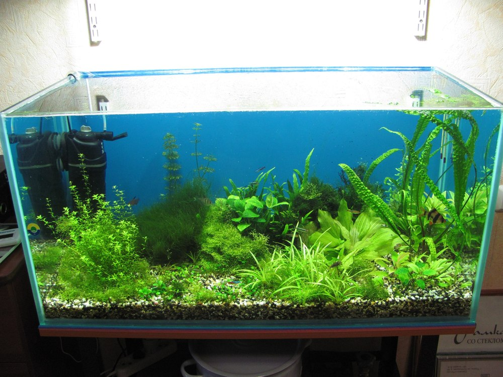 Металлогалогенный светильник для аквариума 19