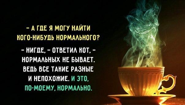 https://cs8.pikabu.ru/images/big_size_comm/2017-11_4/151094507817962295.jpg