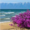Сообщество - Славное море священный Байкал