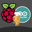 "Аватар сообщества ""Arduino & Pi"""