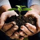 """Аватар сообщества """"Прогрессивное растениеводство"""""""