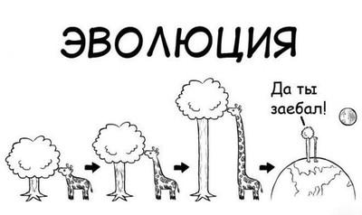 visokiy-rost-ogromnaya-zhopa-zhenshin-nas-s-podruzhkoy-v-popki