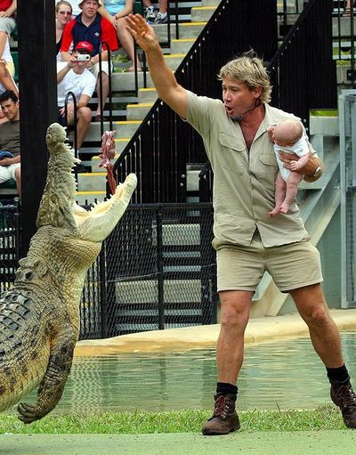 Натуралист которого укусил крокодил стив ирвин