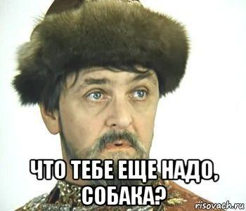 https://cs8.pikabu.ru/images/previews_comm/2016-11_1/1478124452184523530.jpg