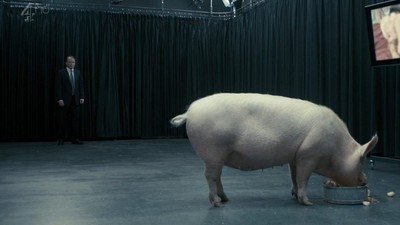 мужик ебт свинью и корову