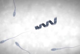 Спермобот мотор, сперматозоиды, яйцеклетка, бесплодие, Медицина, Интересное, гифка