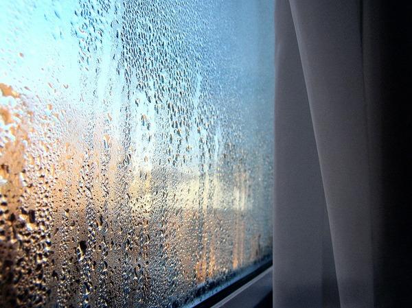 Грибок на окнах. Грибок, Окна потеют, Влажность, Вентиляция, Тепловизор, Длиннопост