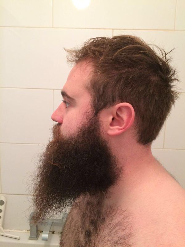 Растил бороду ровно год. С 2015 по 2016, ну что ж, пришла пора побриться Борода, Лак, До и после, Копипастушка, Сбрил, Длиннопост