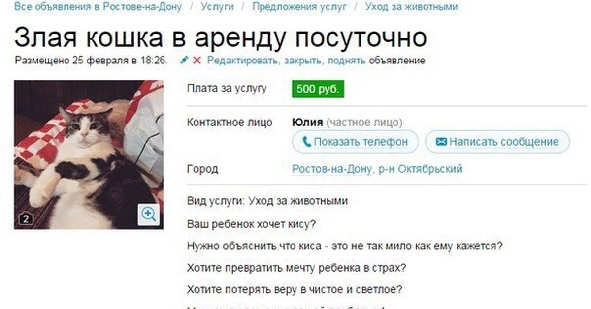 Продам кота за 2,5 миллиона рублей, вместе с квартирой