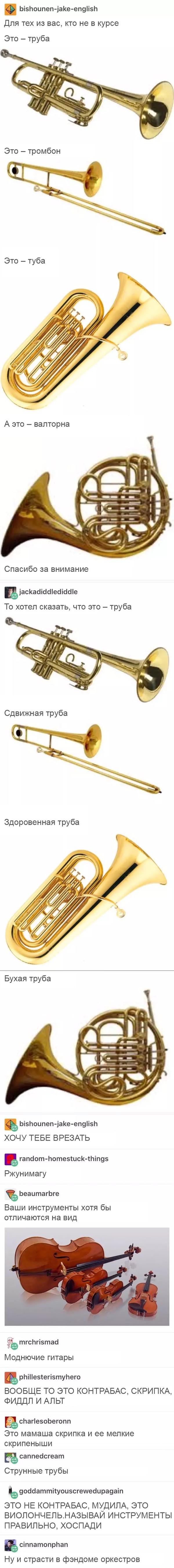 Шикарная попа truba