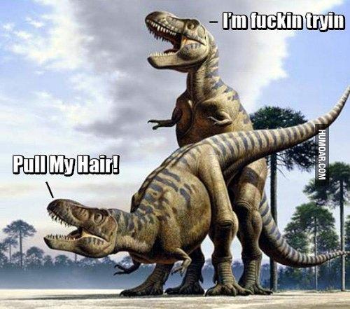 Картинки по запросу Тиранозавр мем
