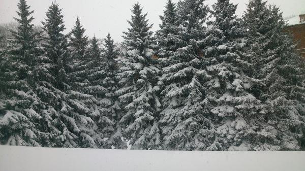 Немного красоты с работы (Xperia P) Картинки, Работа, Зима, Красота, Длиннопост