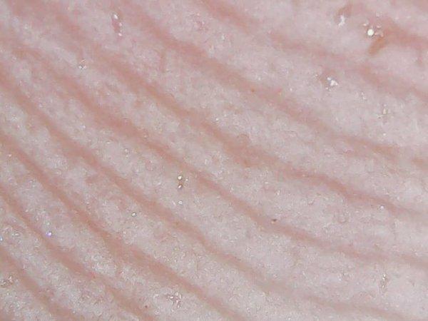 Продолжения поста . Вещи под микроскопом Микроскоп, Страх, Ужас, Еда, Крипер, Длиннопост