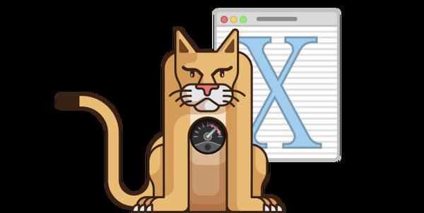 История развития OS X от Apple Os x, Apple, Лайфхак, История, Кот, Длиннопост