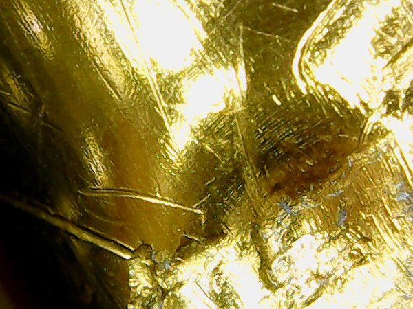 Простые вещи под микроскопом Микросъёмка, Страх, Ужас, Еда, Длиннопост