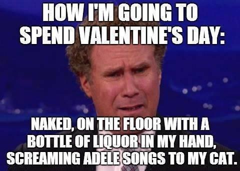 Valentine's day День святого Валентина, Кот, Adele