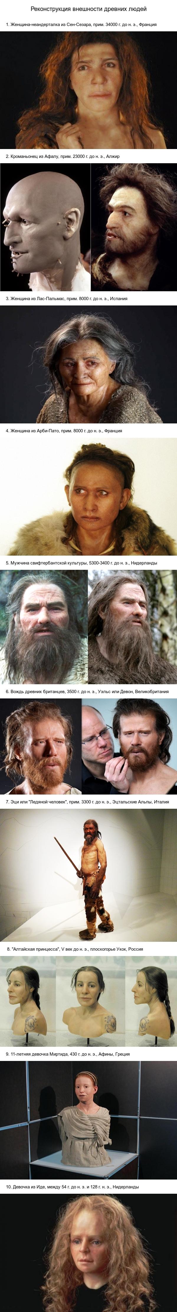 Реконструкция внешности древних людей антропология, история, реконструкция, древние люди, длиннопост