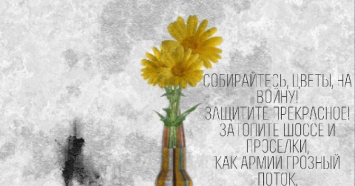 Цветы лучше пуль фильм