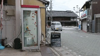 Интересная телефонная будка :D Телефонная будка, Аквариум, Длиннопост, Гифка