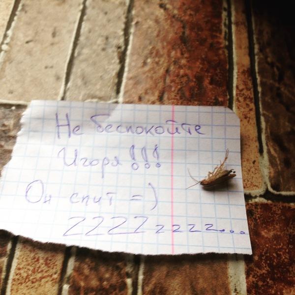 """Познакомился с этим парнем в баре возле Универа. Если тут есть пикабушники из Минска трактир """"жили были"""""""