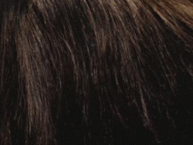 Волос под микроскопом Волосы, Микроскоп, Увеличение, Интересное, Необычное, Zoom_journey, Гифка