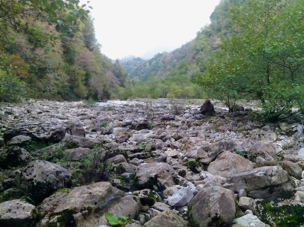 Самшитовый лес в Самегрело и нереально красивый водопад Кагху Грузия, Самегрело, Водопад, Кагху, Мои фото, Фотография, Природа, Длиннопост
