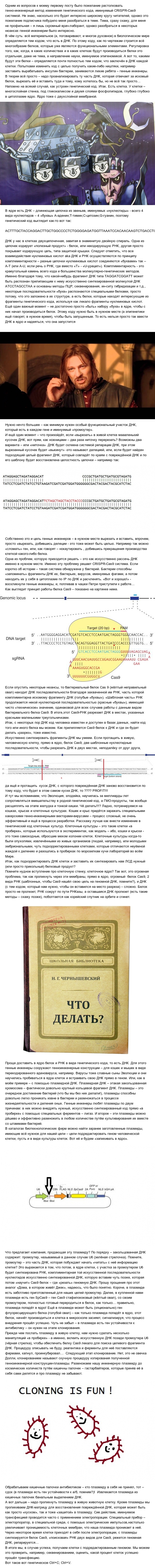 Генетическое программирование: Ctrl+C; Ctrl+V Генетика, Технологии будущего, Длиннопост, Научпоп