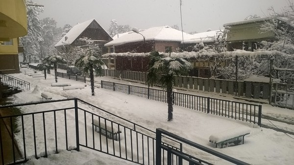 Зима в субтропиках Грузия, Аджария, Кобулети, Черное море, Зима, Фотография, Мои фото, Длиннопост