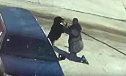 Пожилой китаец полчаса отбивался от напавшей на него собаки при помощи боевых искусств. Нападение собак, Китайцы, Самозащита, Видео, Длиннопост
