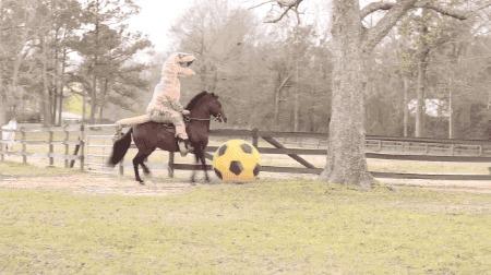 Он на коне