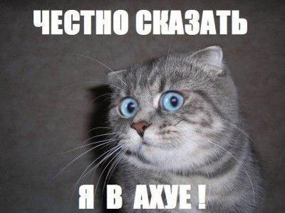 Негодования пост Челябинск, Мат, Ремонт ноутбуков, Компьютерная помощь, Идиоты, Развод, Длиннопост