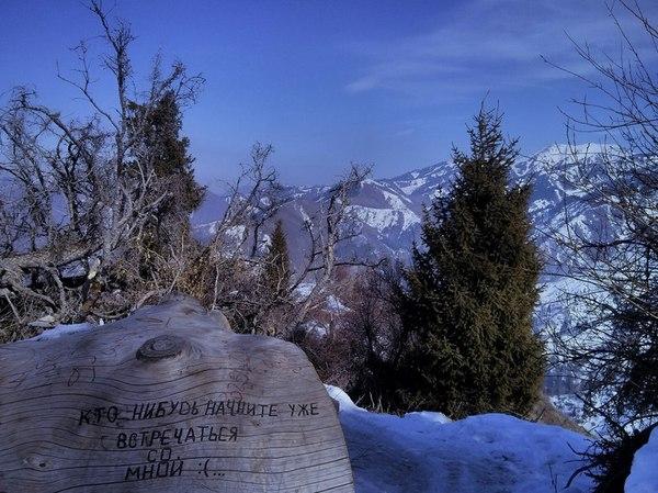 Крик души в горах