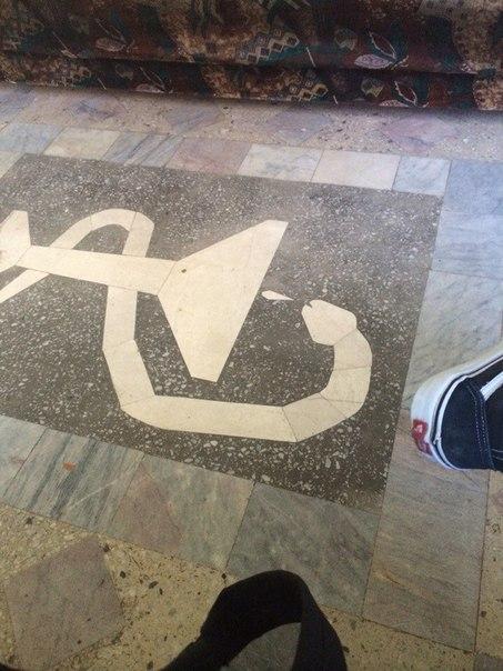 Змейка в больнице, Казахстан