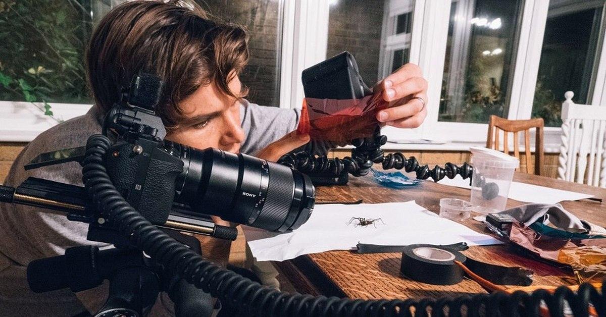 Как правильно фотографировать в режиме макро