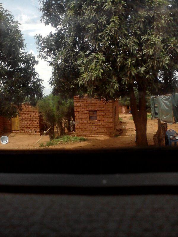 """""""Не ходите, дети, в Африку гулять!"""" - 2 Текст, Длиннотекст, Африка, Работа мечты, Юмор, Работа, Конго, Длиннопост"""