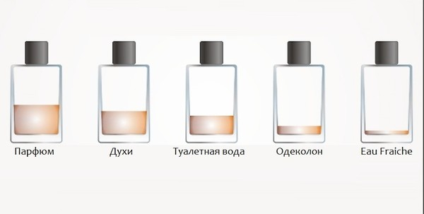 Разница между одеколоном, духами, туалетной водой и парфюмом Духи, Одеколон, Туалетная вода, Парфюмерия