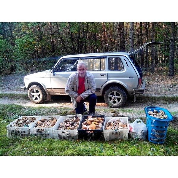 Отец - Заядлый грибной охотник
