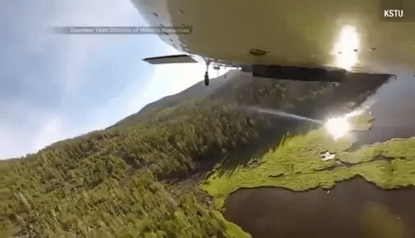 Заселение рыбы в водоем путем сброса с воздуха..