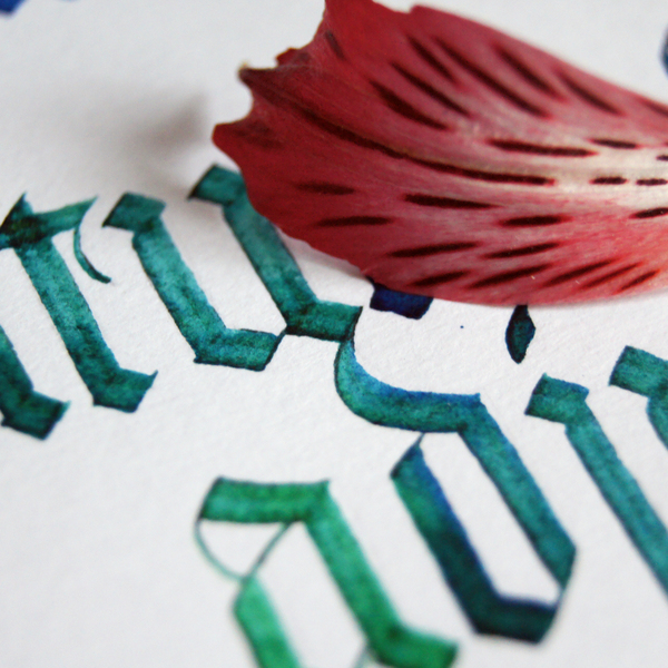 Каллиграфия. С чего начать? Инструментарий. Каллиграфия, Инструменты, Calligraphy, Леттеринг, Рукопись, Арт, Буквы, Туториал, Длиннопост