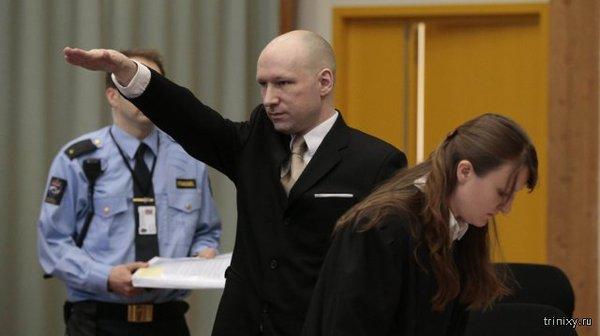 Норвежский террорист Андерс Брейвик, убивший 77 человек, требует улучшения условий содержания Брейвик, убийца, террористы, Лысый