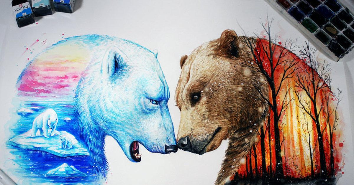 красивые рисунки медведей всех сторон
