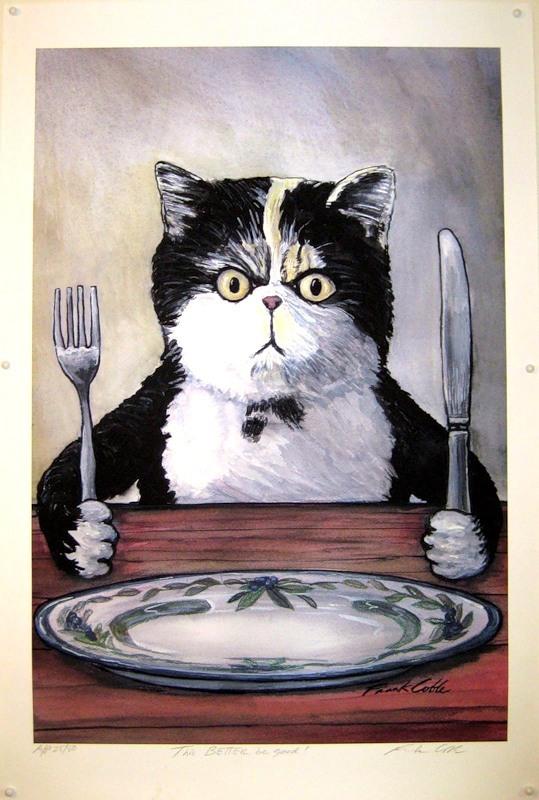 Кот голодный рисунок