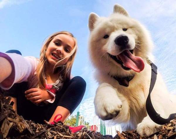Картинки по запросу Девочка с собакой