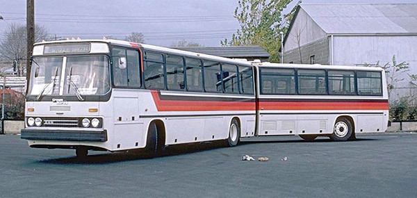Подрался в автобусе и сунул свой член — img 6