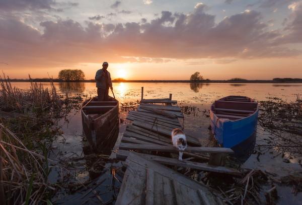 Тишь да гладь Озеро Тишь, Рязанская область, пейзаж, природа, кот, лодка