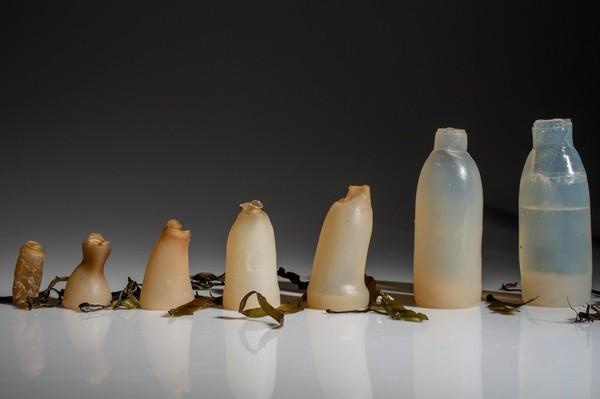 Биоразлагаемые бутылки из водорослей – зеленая альтернатива пластику Agario, Бутылка, Водоросли, Пластик