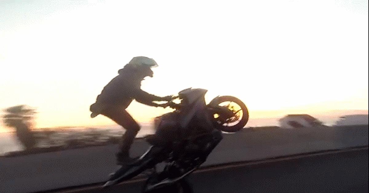 артистка благодаря анимация мотоциклист засмотрелся включает
