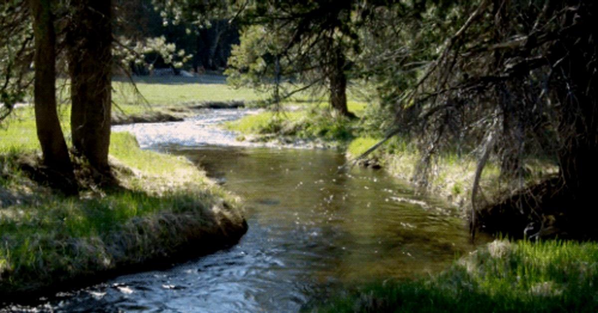 Мужчине, картинка анимашка река