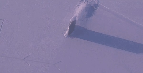 Всплытие в арктических льдах