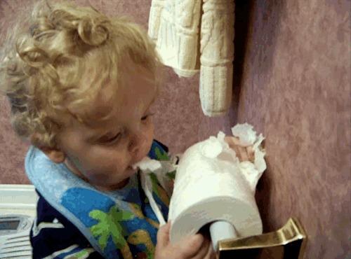Мальчик, воспитанный котом. Дети, Гифка, Туалетная бумага